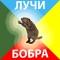 Аватарка пользователя Добрый_Бобёр
